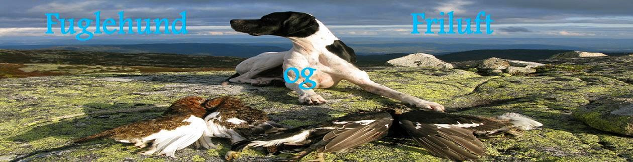 Fuglehunder