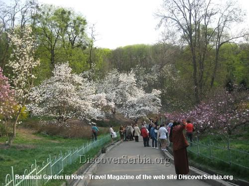 Botanicka basta Kijev