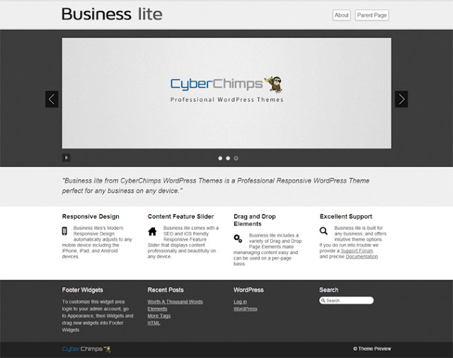 Business-lite Free WordPress Theme in BTDesigner