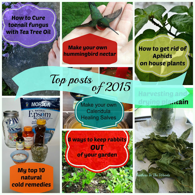 Best garden posts of 2015