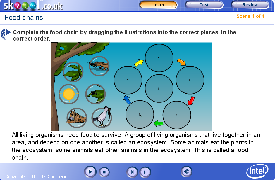 http://lgfl.skoool.co.uk/content/primary/science/food_chains/index.html