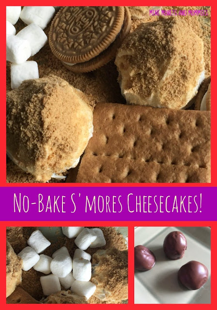 Mini Monets and Mommies: S'mores Cookie Ball Truffles No-Bake Treats