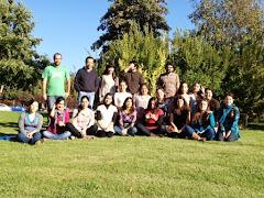 Post- Título Terapia Sistémica de Familias y Parejas. Talca 2013-2015