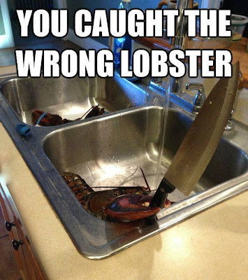 You caught the wrong lobster. Lobster coming out of a kitchen sink holding a large knife in it's claw!