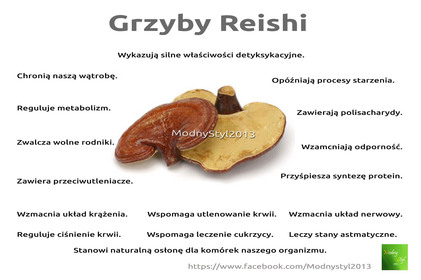 Grzyby Reishi
