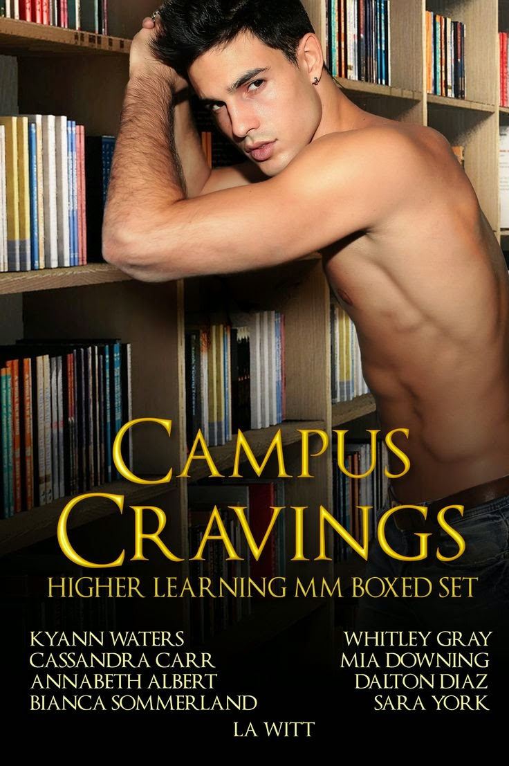 http://www.amazon.com/Campus-Cravings-Higher-Learning-Bundle-ebook/dp/B00MZ9GDHS/ref=zg_bsnr_10169_5