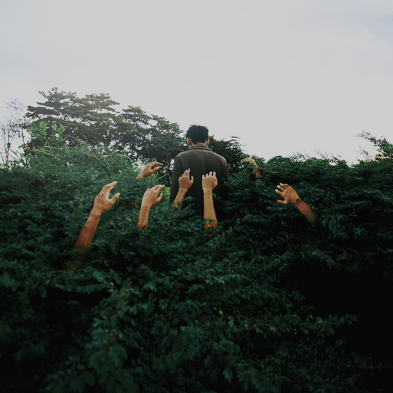 ©Yutha Yamanaka - Project 365. Fotografía | Photography