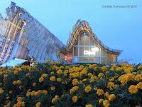 Il Mio Vivere #EXPO2015: Cina