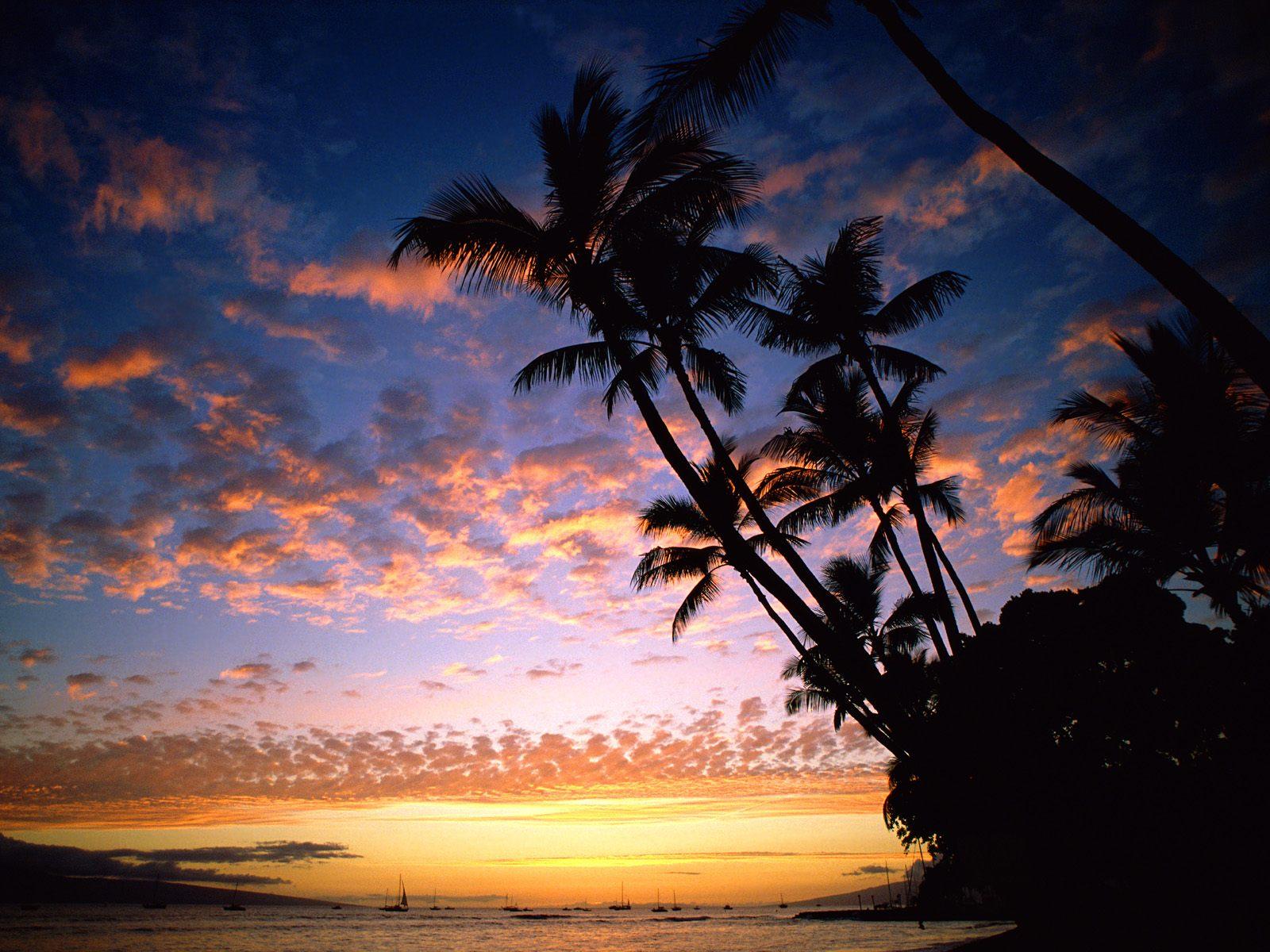 http://3.bp.blogspot.com/-2HRsMXEMGPU/ThKnPikk7UI/AAAAAAAAA6U/4BTpGcqok_U/s1600/nature-wallpaper-afterglow-hawaii.jpg