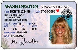 Wa state drivers license requirements