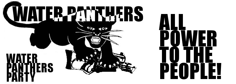 Water Panthers Party