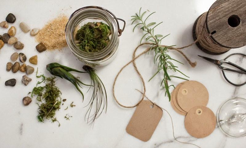 mason jar terrarium gifts