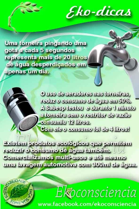 Ekobrazil Ekoauto Produtos de Limpeza Ecológica Ecologicos