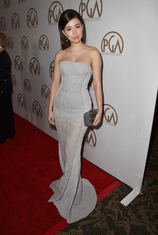 Surely, this is just too adorable and it was very solidly for our fashion story.  While we're used Christian Serratos to keeping her natural in commonly, we were caught by surprise into her art at the red carpet of 2015 Producers Guild of America Awards.