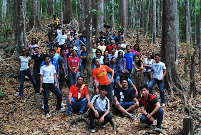 Bohol Manmade Forest_01