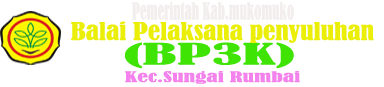 Bp3k Sungai Rumbai