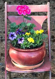 SPRINGTIME PLANTINGS!
