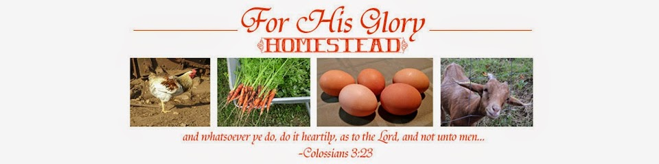 For His Glory Homestead