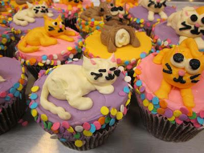 foto Kue-kue kucing yang unik