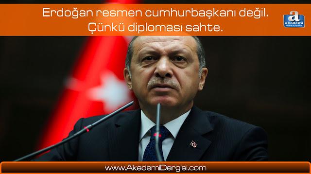 Recep Tayyip Erdoğan, sahtekarlık, sahte kahramanlar, ergun poyraz,