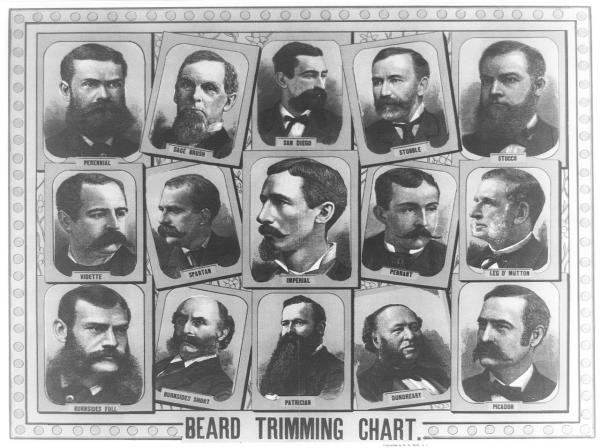 Beard Trimming Chart