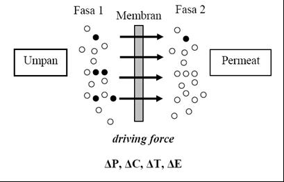 Me my world and my chemistry kimia membran membran polipropilene proses pembuatan membran polipropilen lebih baik bila dilakukan dengan metode fasa balik hal ini dikarenakan polimer polypropilene pp dengan struktur ccuart Choice Image