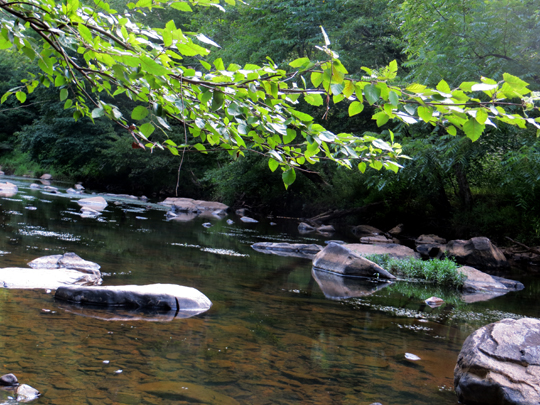 ENO RIVER STATE PARK  Durham  NC  A Place to Enjoy Nature
