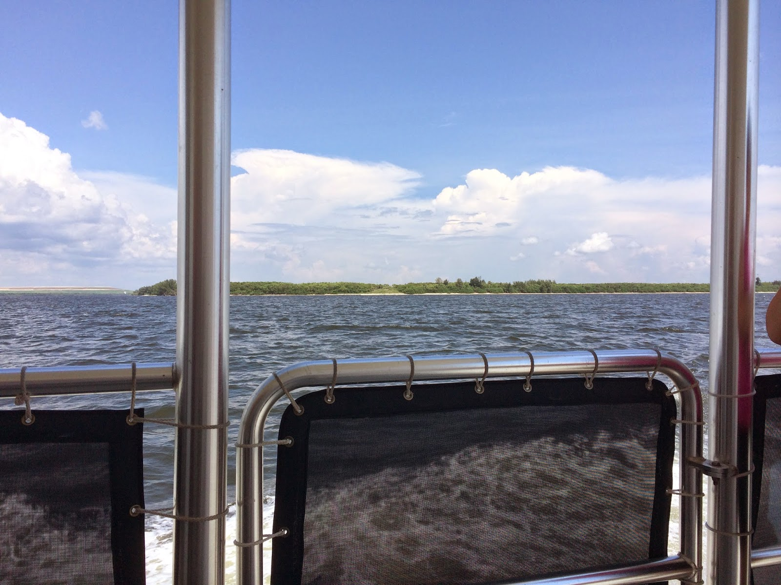 #ivysvariety Dolphin Cruise The Florida Aquarium Tampa
