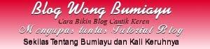 Bumiayu Blog