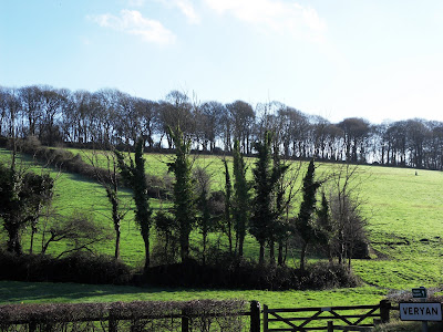 Countryside at Veryan, Cornwall
