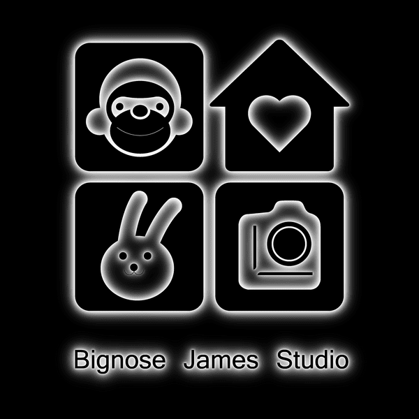 Bignose James Studio
