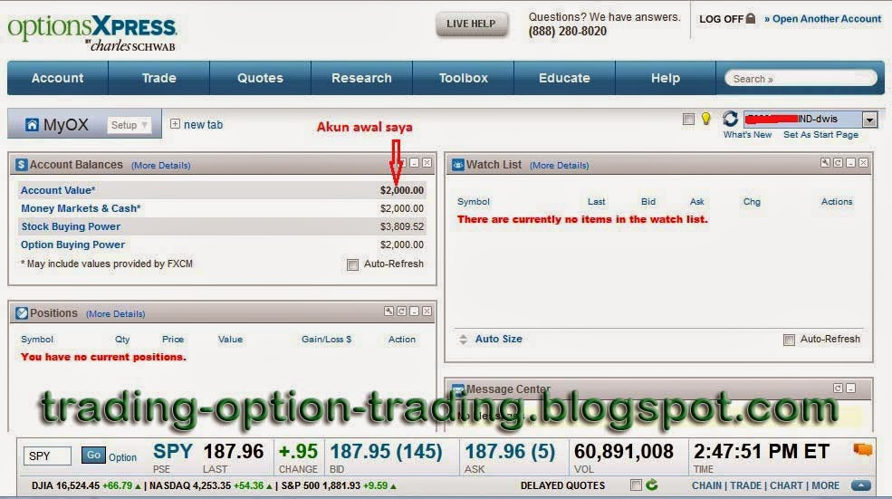 Option trading full time