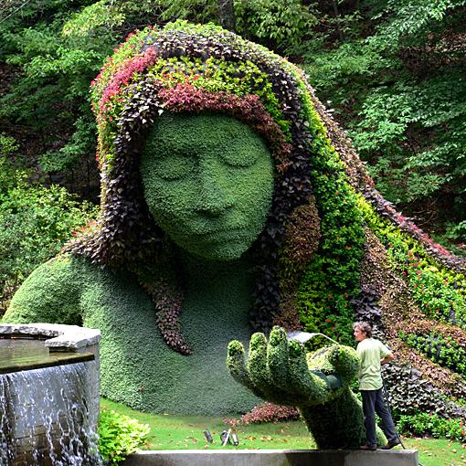 Earth Goddess being hand watered | Atlanta Botanical Garden