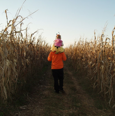 Cruze Farm Corn Maze