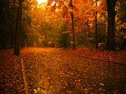 Soplo vientos de otoño para escuchar el canto del planeta. oto