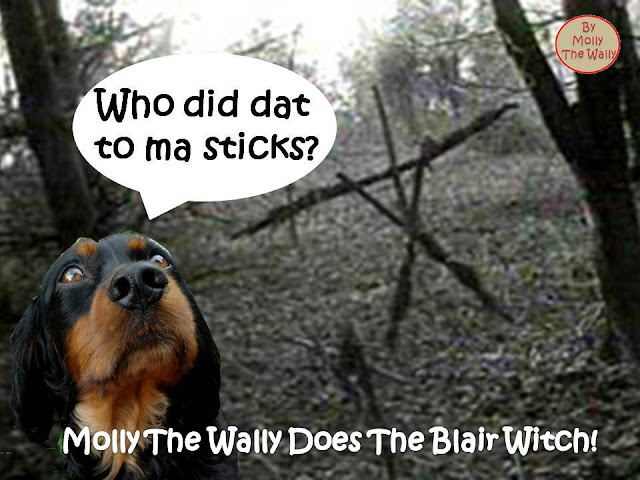 Molly The Wally does The Blair Witch Project.