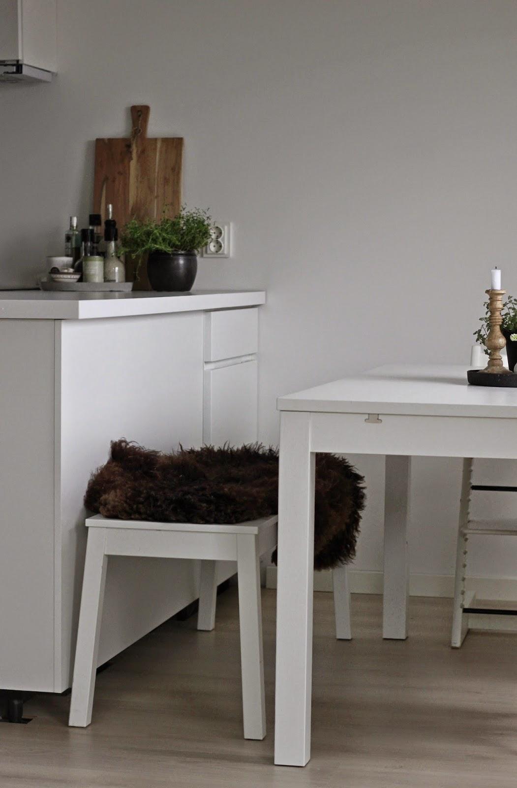 Hagenhuset: kjøkkenbordet