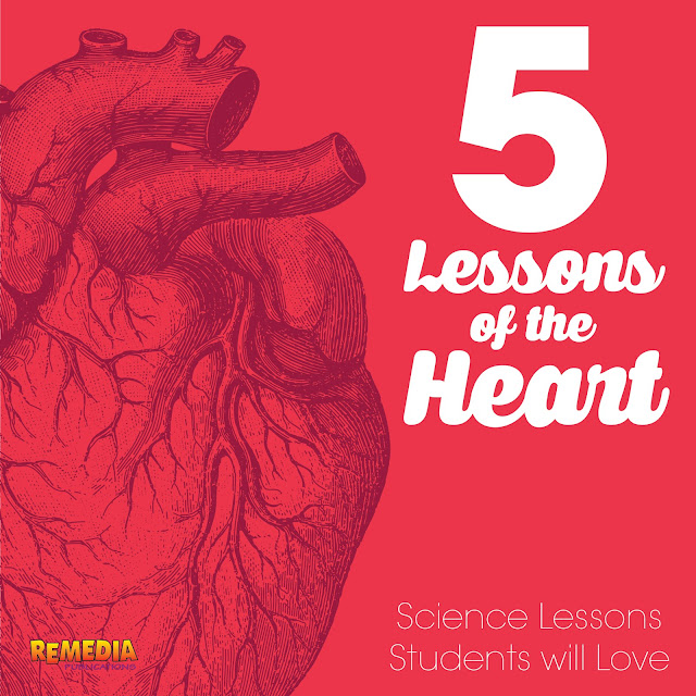 5 Heart-Themed Science Lessons about the Heart | Remedia Publications