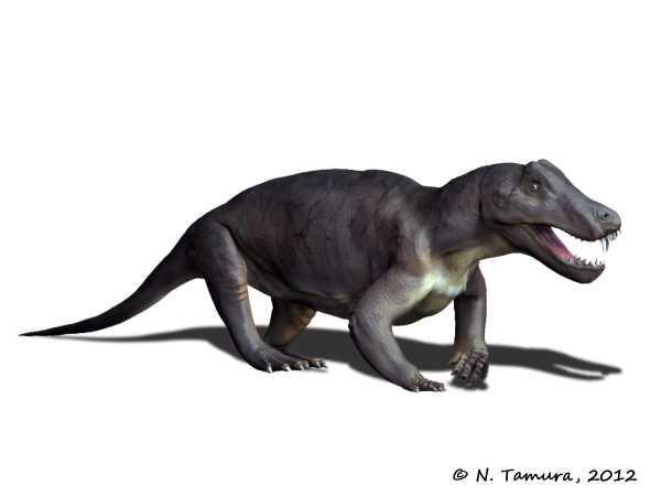 Palaeocritti Blog  Anteosaurus Magnificus