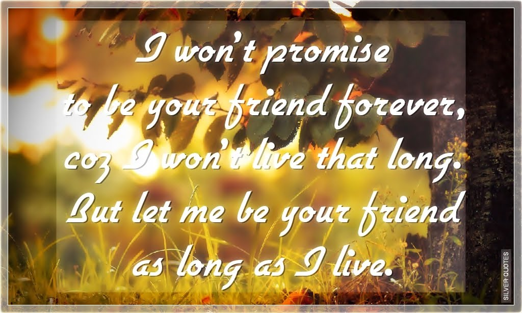 i wont promise to be your friend forever silver quotes