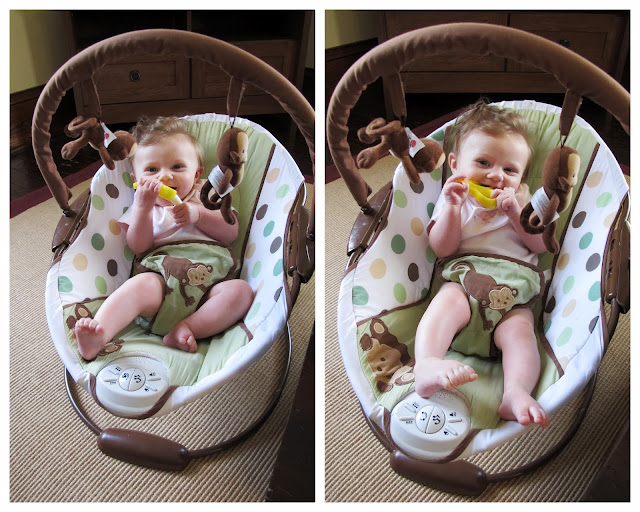 Stella in Her Monkey Bouncer