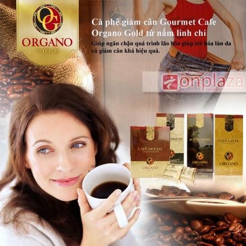 Thực phẩm chức năng Gourmet Café Mocha Organo Gold Cafe giảm cân