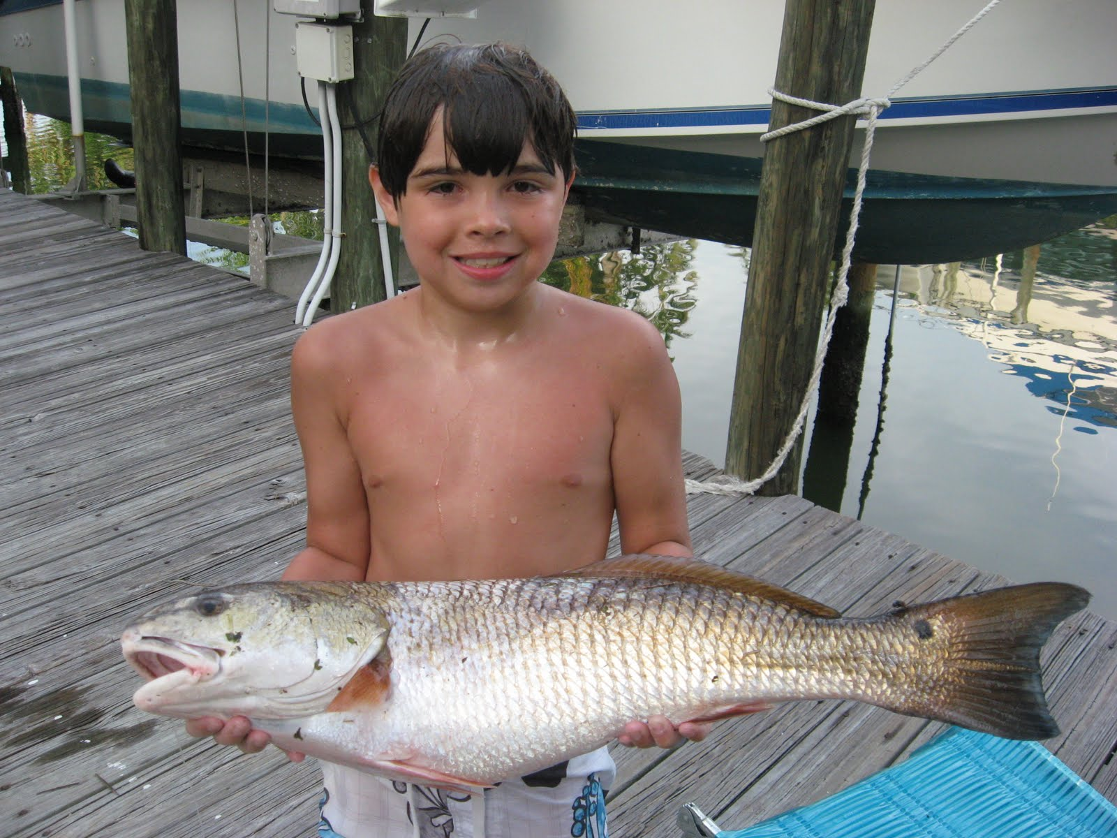 Saltwater fishing tips for the south red fish fishing for Best bait for saltwater fishing