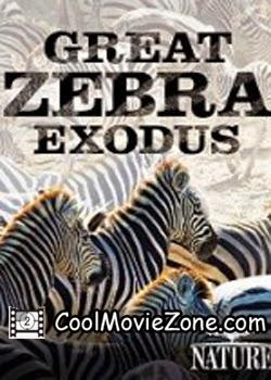 Nature: Great Zebra Exodus (2013)