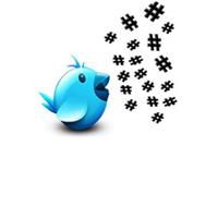 twitter kuş, twitter bird, trend topic, twitter #, twitter diyez