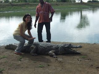 Paga Crocodile Pond In Ghana, Alligator, Crocodile Photos, Amazing Facts, Shocking News
