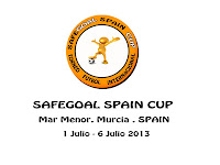 SafeGoal Cup 2013
