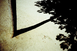 Photographie Vincent Bard, candidat