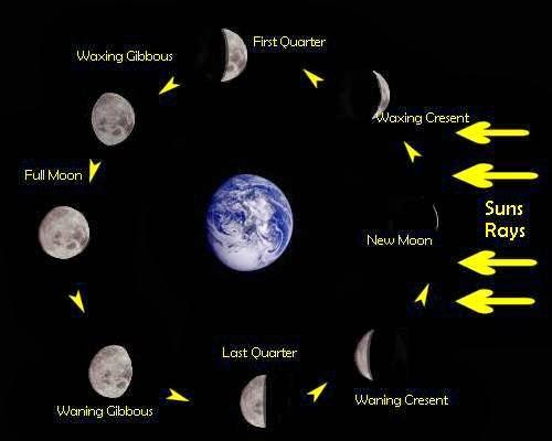 Ian S Astronomy Blog October 2013