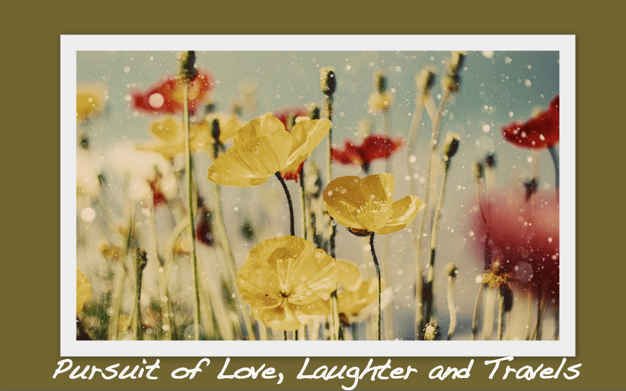 Pursuit of Love, Laughter & Travels